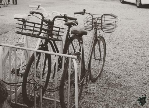 The Bike Rack at The Surf Lodge